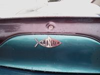 Linux Fish